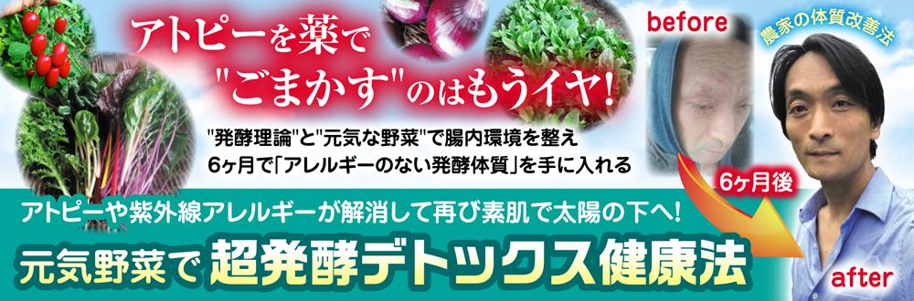 元気野菜で体質改善!超発酵デトックス健康法